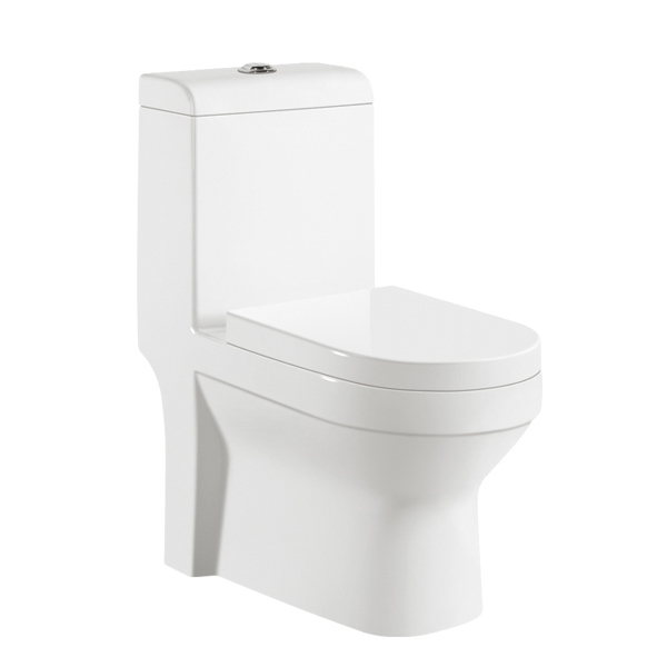 Washroom ceramic toilet WC 9005